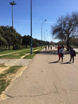 Chemin du retour d'après marathon: 2kms dans un parc